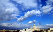 What Kinds of Plants & Animals Live in the Region of Moscow, Russia?