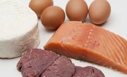 5 Types of Protein