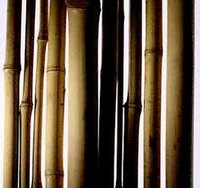 Make a Bamboo Staff