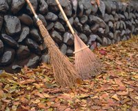 Leaves ready to be raked