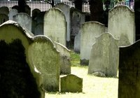 Make a Miniature Graveyard for Halloween
