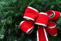Give your tree an inexpensive lift by tying your own bows.
