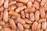 Types of Pinto Beans