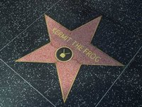 Create Your Own Hollywood Star
