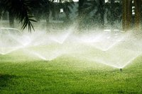 History of the Lawn Sprinkler