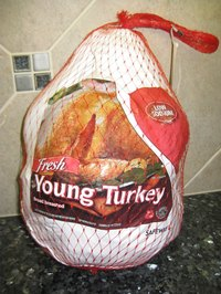 A fresh young turkey that was bought for Thanksgiving dinner.