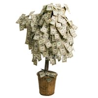 40th Birthday Money Tree Ideas