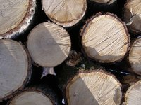 The Doyle Log Scale allows you to estimate how much lumber a log will provide.