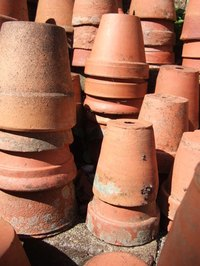 Seal terracotta pots to protect them from weather.
