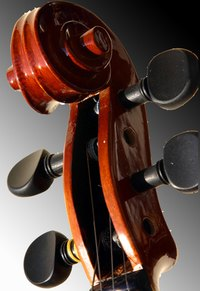 Tapered wooden tuning pegs like the ones in this violin use friction in order to hold a string taught.
