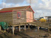 Pile dwellings have poles--often called stilts--driven into the ground to support their structures.