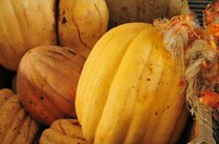 Spaghetti squash can satisfy your appetite for pasta.