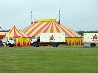 Feature a large circus tent in your backdrop.