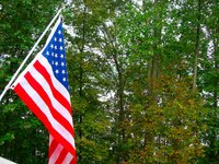 Decorate your house with flags and wreaths on Veterans Day.