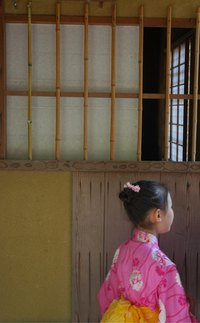 Mimic a traditional Japanese rice paper window with wax paper.