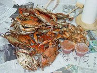 It is hard to differentiate between snow crabs and king crabs