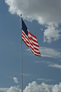 Pay proper respect to the U.S. flag on Veterans Day.