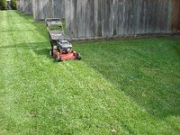 A mower alone cannot keep a lawn healthy.