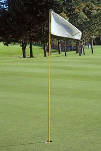 Make your own golf tee flags to resemble the real ones.