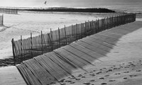 Sand fences may be made from a variety of materials, but wooden fences remain the most popular.