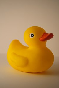 Play a guessing game with rubber ducks.