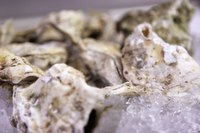 Oysters come in a range of different colors.