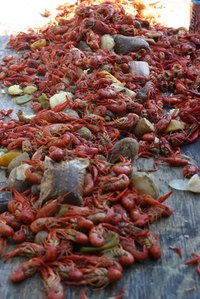 Crawfish boiled and spiced for a simple supper.