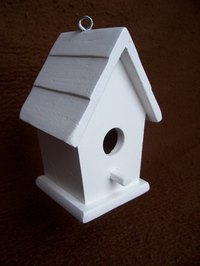 Build a birdhouse with basic tools.
