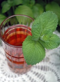 Mint leaves have been used for many purposes for centuries.
