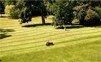 Riding mowers are useful tools when managing a large lawn.