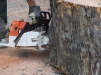 Maintain chainsaw depth gauges for optimum use.