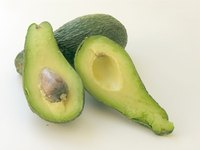 Many varieties of avocado thrive in Florida.