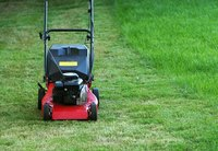 Mowing the lawn is an important aspect of its care.
