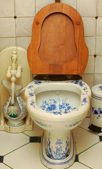 An unclean toilet bowl is a breeding pot for all manner of germs.