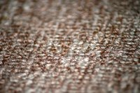 Inexpensive Berber carpet may quickly show wear and tear.
