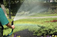 Spray the filter with a garden hose to remove imbedded debris.