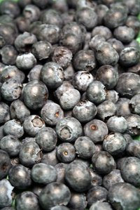 Fresh or dried blueberries are filled with vitamin C that is benificial for good health.