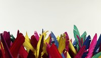 Use colorful feathers to decorate your bird mask.