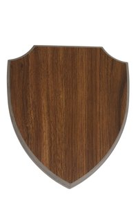 Simple wood shields were used in ancient warfare.