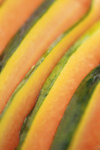 Coax cantaloupes from a garden with attentive gardening.
