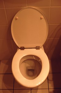 Improper use of a toilet augur can damage a toilet's porcelain.