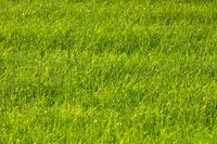 A 3-acre yard requires hours of mowing each week.