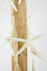 Decorating with starfish.