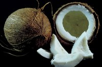 If it's not completely fresh, the water inside your coconut might begin to ferment.