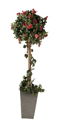 Decorative flowers can also be added to your topiary decoration.