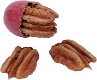Pecans grow well in Florida.