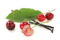 Each cherry fruit contains one cherry pit.