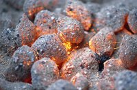 Discard old charcoal briquette ash away from plants, as it contains toxins.