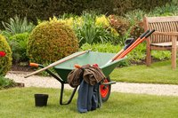 A parked wheelbarrow in the yard with garden tools in the basin.