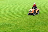 Farmer driving red lawn mower over field of grass